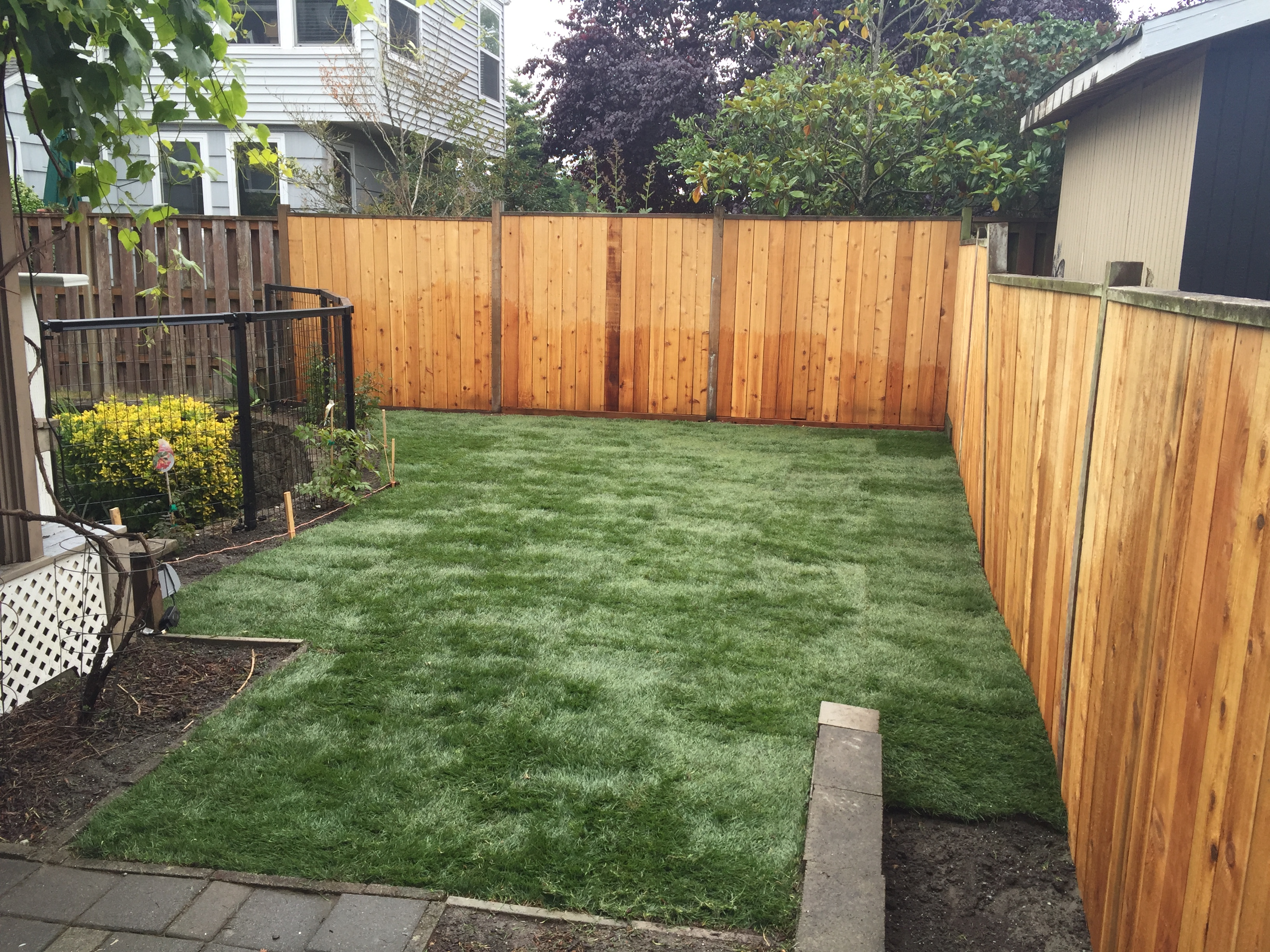 Sod and fence contractor