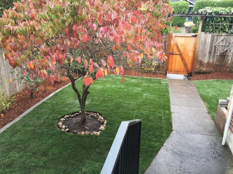 Seattle Landscape Design